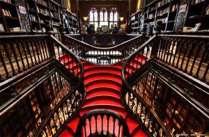 libreria harry
