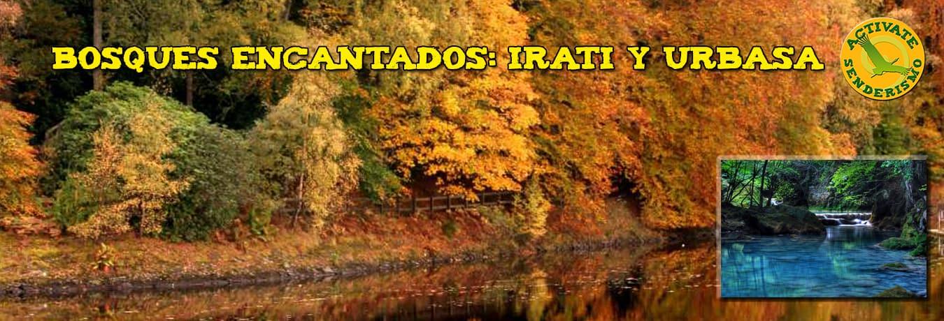 irati_banner